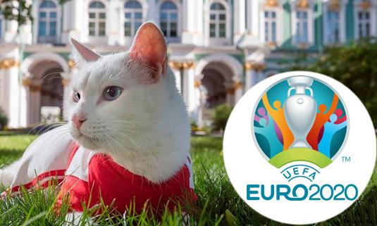 Кот из Эрмитажа станет оракулом чемпионата Европы по футболу