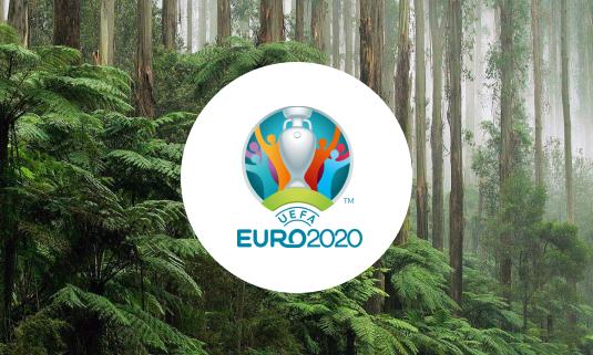 УЕФА займется экологией во время Евро-2020
